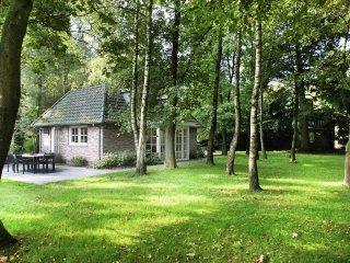 House 1.4 km from the center of Haaren with Internet, Parking, Terrace, Garden