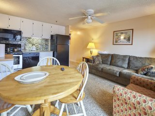 ML#237, 1BR/1Bath*SKI/Bike in/out*Free Wifi,Parking and AC