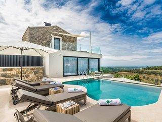 Stunning villa with pool and wellness area near Umag