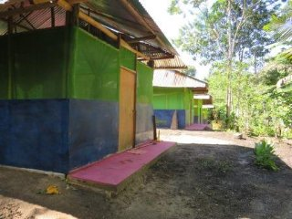 ayahuasca oasis healing center