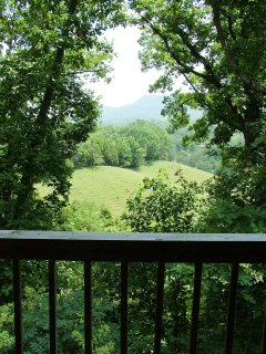 View from back deck overlooking meadow with Smoky Mountains beyond.
