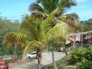 Bungalow 50m from Petite Anse beach