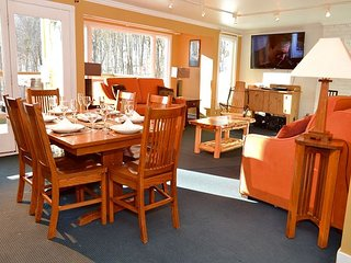 Luxury One Bedroom Condominium #1 SkiOnSkiOff Great Eastern Ski Trail!