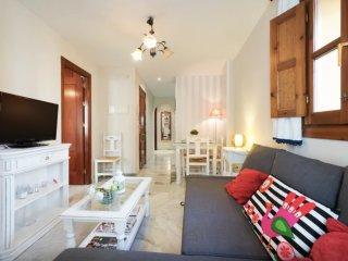 Bright house in Granada centre