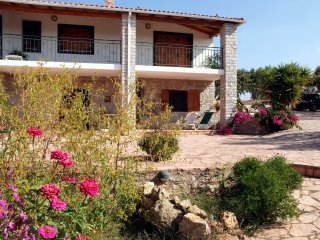 Charming apartment in agios ilias on a 8000 sqm land full of olive trees!