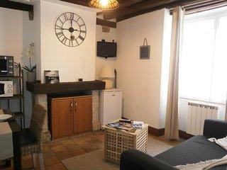 Au petit Bourg St Jean - appartement centre historique de Blois