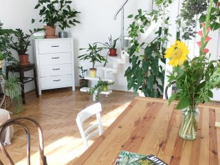 Green flat in the heart of Budapest-pet friendly