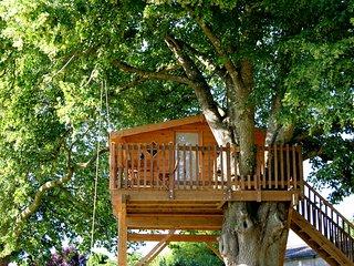 Cabane Duo dans les arbres