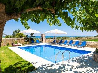 Villa Pinelopi - Seafront Villa 350m Away from Organised Sandy Beach