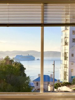 Top views - sit back and watch the cruise liners and yachts gliding by