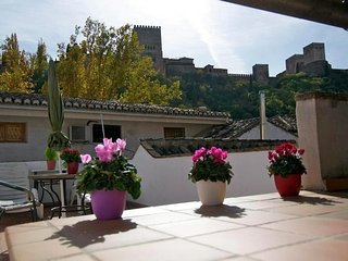 Apartment in the center of Granada with Internet, Terrace, Garden (53445)