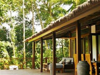 Jungle Wooden Villa in Ubud