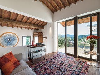 The MOONLIT & SUNNY COTTAGE in an olive grove close to Florence in Tuscany