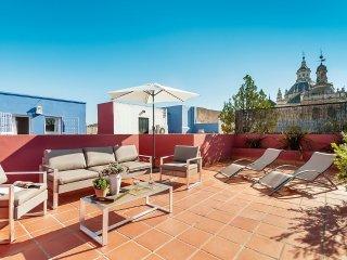 Amplio, comodo apartamento con terraza junto a la Plaza del Salvador