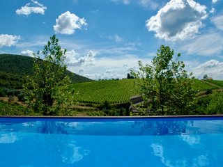 "Gated Luxury Estate ""LaChiusa"" Prime Chianti Classico! Exquisite Privacy & Views"