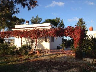 Villa Due Trulli - Depandance
