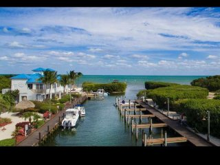 Tropical 2 Bedroom Ocean View Suites (J) - NEW POOL, Dock & Marina - Near all at