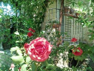 Casa vacanze con giardino per 7 persone