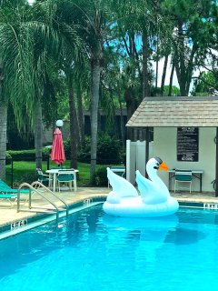 AAA Accommodation in The Meadows - Sarasota