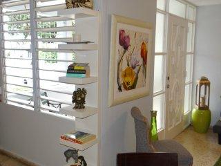 CAPARRA VILLAGE VACATION APARTMENTS - 2 Bedrooms - Free WiFi