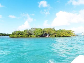 Private island in Marathon, Florida Keys! Dolphin Jump Key / Little Russell