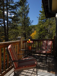 Additional very private Patio. Morning Coffee, Afternoon Libations, Outdoor Meals.