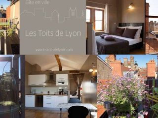 "Loft ""Les Toits de Lyon"" 3* fully furnished"