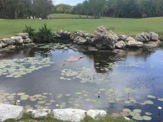 paseo por le campo de golf