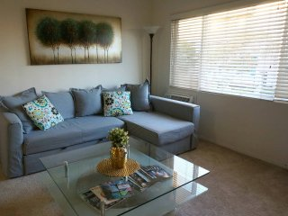 Charming 1 Bdrm, with Air Conditioning - Walk to UCLA +Parking!