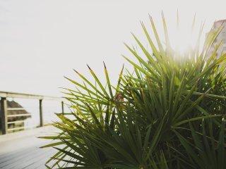 "Miramar Beach ""Brigadnoom Penthouse"" 50 Surf Song Lane Unit C507 ~ RA157528"