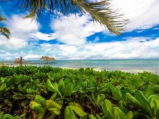 Spectacular villa beach front