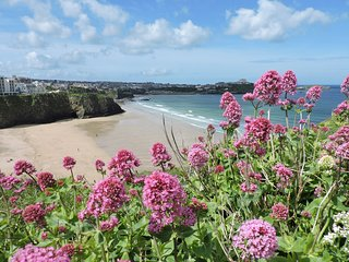 Azur Ocean Heights, Central Newquay - Wi-Fi - car parking included