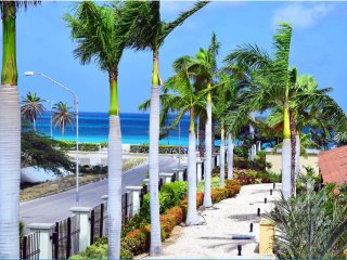 Beautiful condo on eagle beach with amazing garden & ocean views