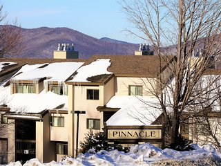 Pinnacle Condo Unit D13 ~ RA147267