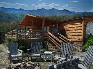 Skytop Cabin ~ RA90027