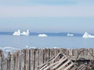 This is a common site to behold during iceberg season in Bonavista