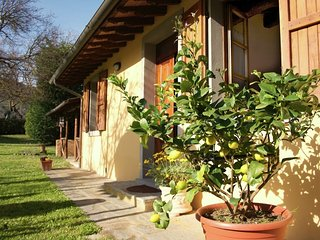 Country house in Castiglion Fiorentino with Internet, Pool, Parking, Garden