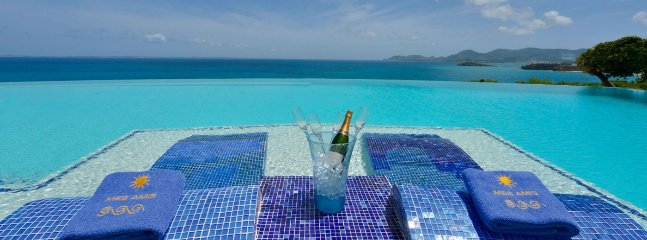 Villa Mes Amis 6 Bedroom (Undoubtedly The Finest Property In St. Martin, Mes