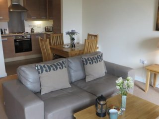 Spacious apartment close to the center of Cambridge with Lift, Parking, Internet
