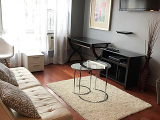 Sunny 2 Bedroom in East Harlem