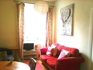 Bright and cheerful apartment with free parking