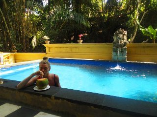 Ravine View, Quiet, Fresh Water Pool, Breakfast, Ubud Centre