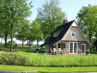 House in Hellendoorn with Internet, Pool, Parking, Terrace (291805)