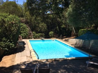 Cabanon provencale pinede piscine