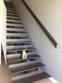 These stairs lead from the main floor to the sleeping loft area on the second floor.
