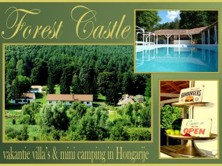 Holiday villa's & Camping Forest Castle