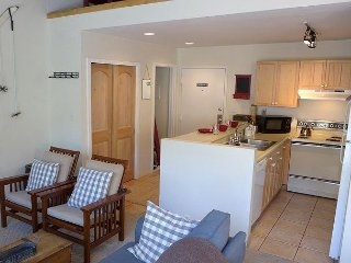Great Value studio at Pitkin Creek can sleep up to six people