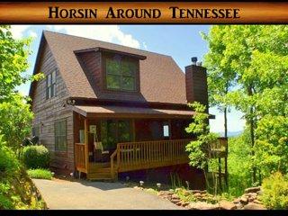 Horsin Around Tennessee ~ RA161581