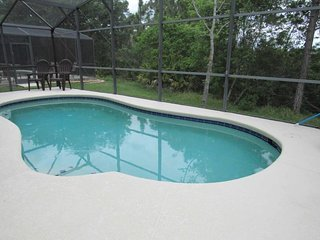 Lake Wilson Preserve 4/3 Pool Home property, fully furnished, with full