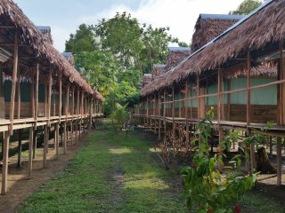 Amazon Buho Lodge